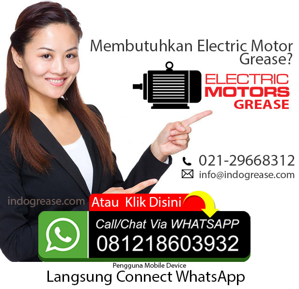 grease Electric Motor polyurea Indonesia 2